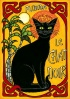 cat le chat noir